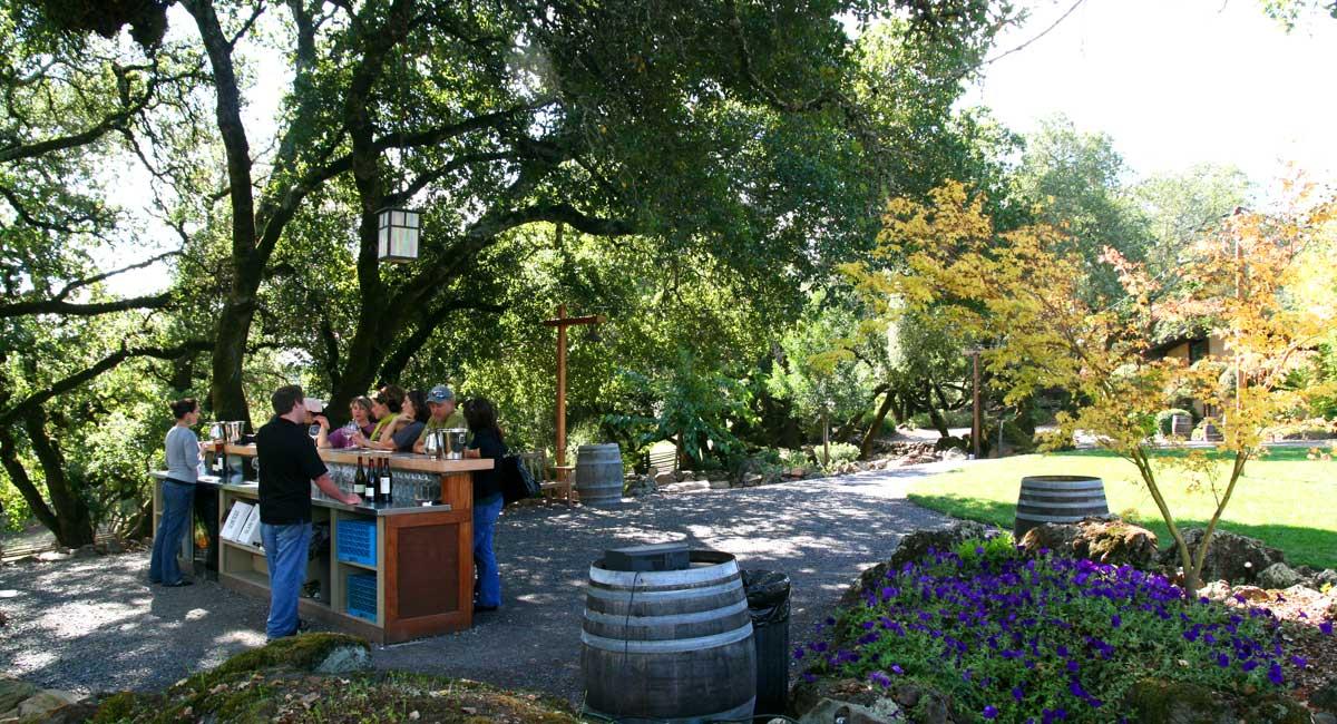 Northern Sonoma Valley Wine Tour Fun