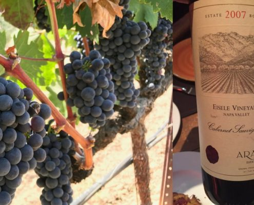 "Cabernet Sauvignon, ""The great colonizer"""